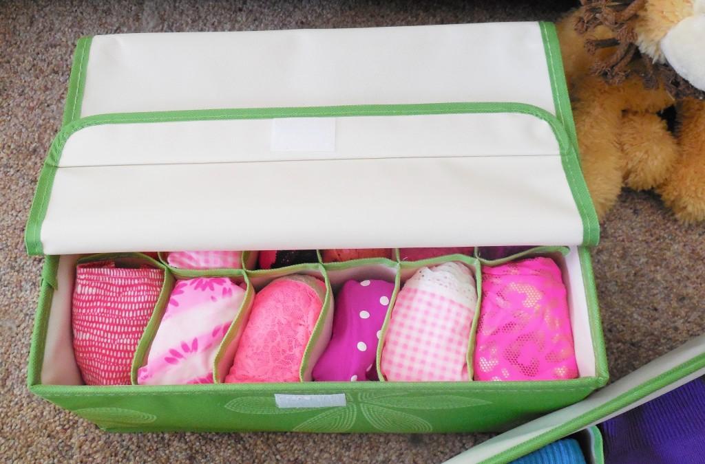 Underwear drawer organizer with lid